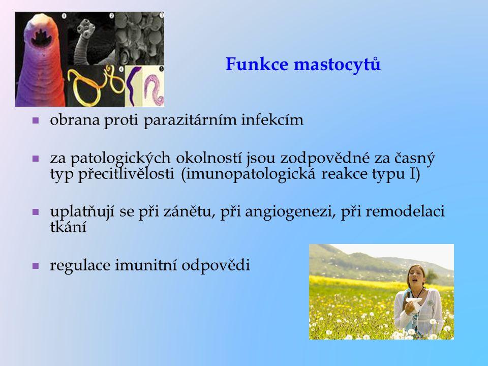 Funkce mastocytů obrana proti parazitárním infekcím