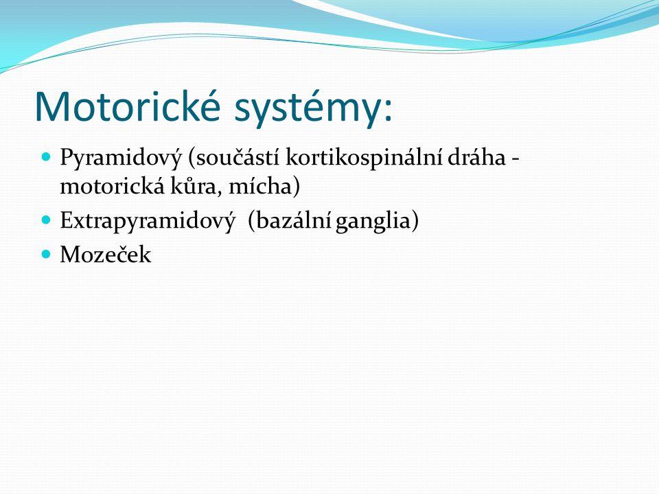 Motorické systémy: Pyramidový (součástí kortikospinální dráha - motorická kůra, mícha) Extrapyramidový (bazální ganglia)