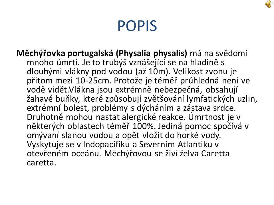 POPIS