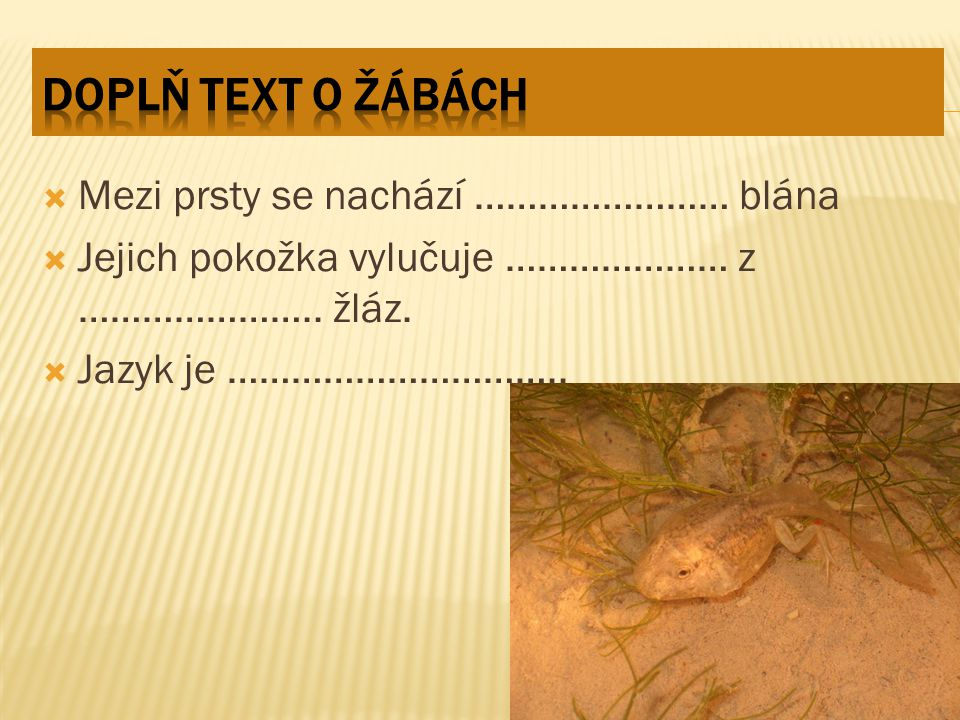 Doplň text o žábách Mezi prsty se nachází …………………… blána