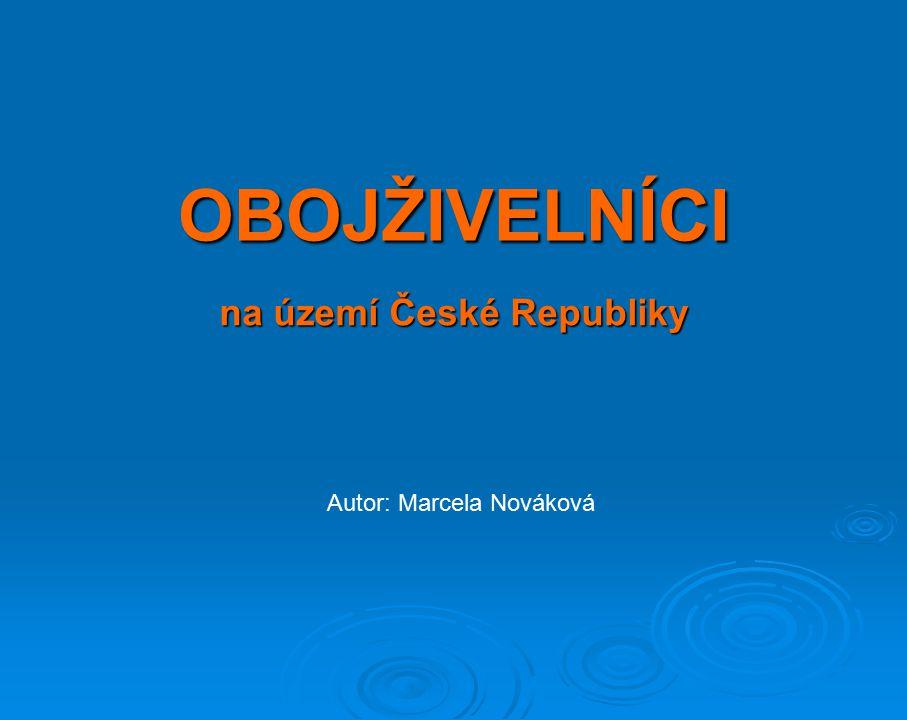 na území České Republiky