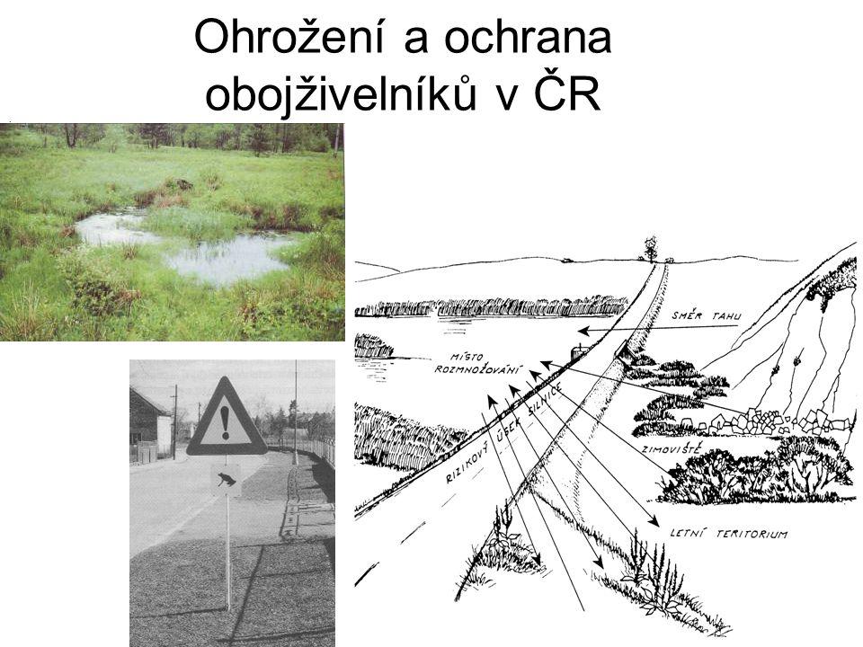 Ohrožení a ochrana obojživelníků v ČR