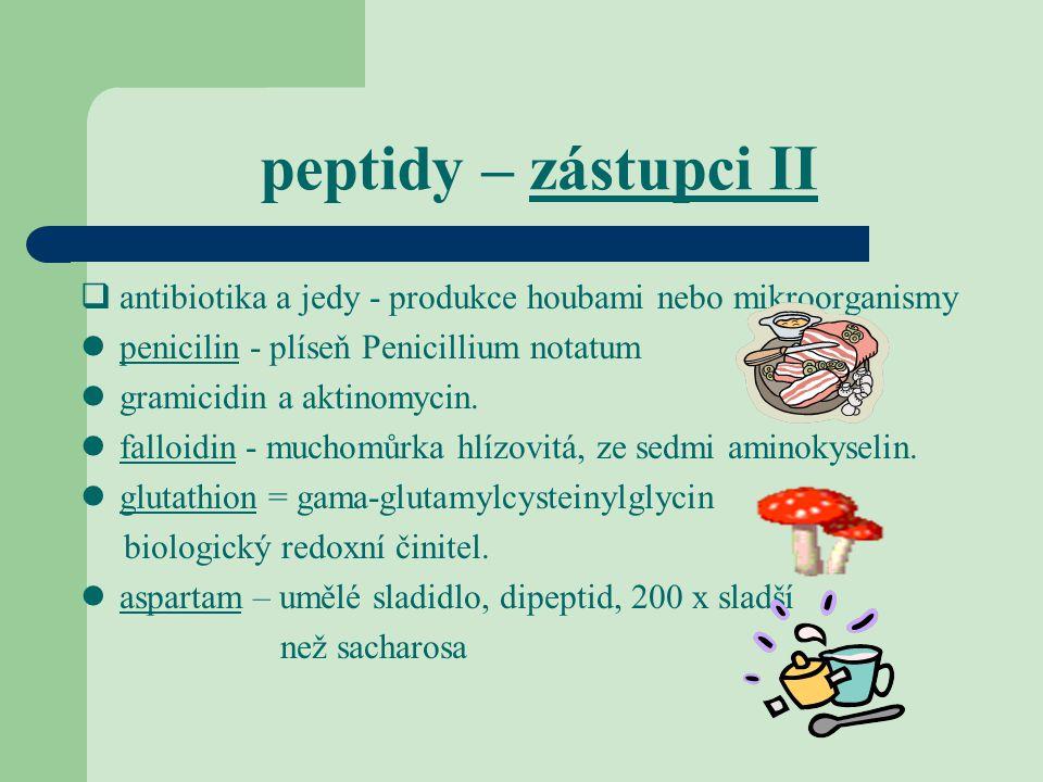 peptidy – zástupci II antibiotika a jedy - produkce houbami nebo mikroorganismy. penicilin - plíseň Penicillium notatum.