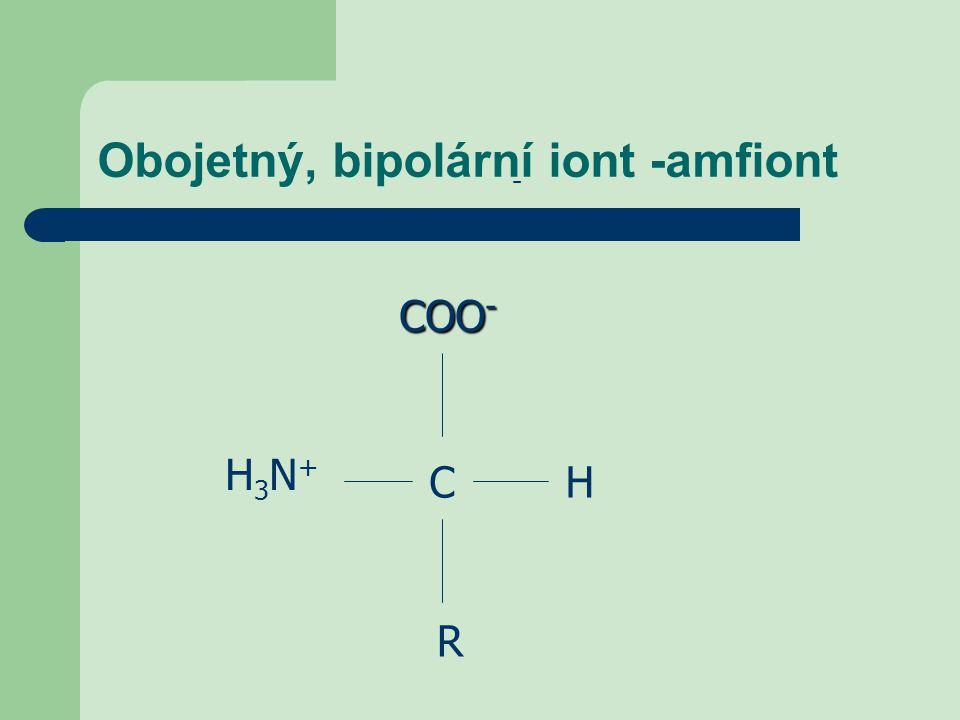 Obojetný, bipolární iont -amfiont