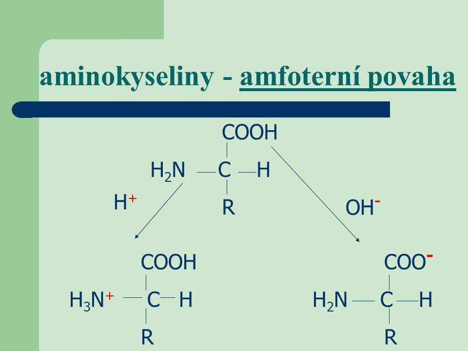 aminokyseliny - amfoterní povaha