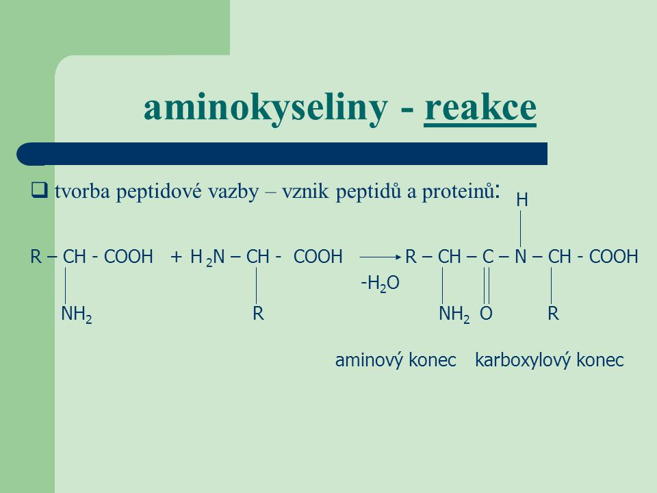 aminokyseliny - reakce