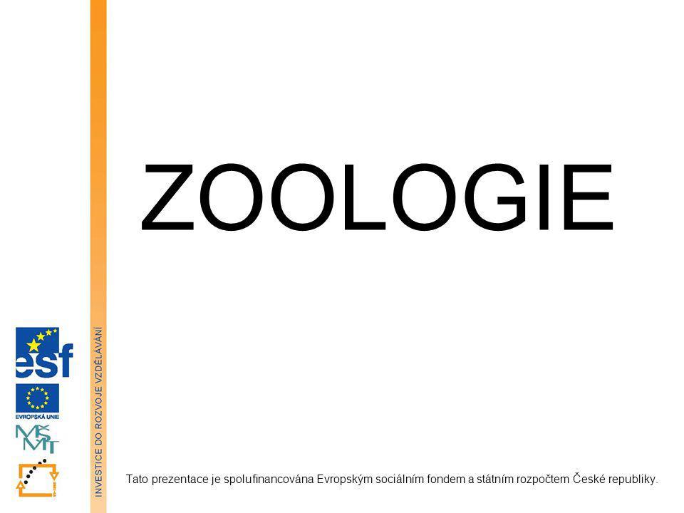 ZOOLOGIE Tato prezentace je spolufinancována Evropským sociálním fondem a státním rozpočtem České republiky.