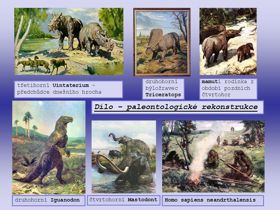 Dílo – paleontologické rekonstrukce