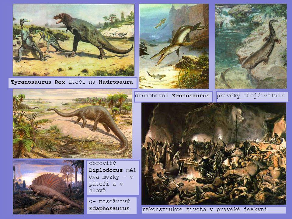Tyranosaurus Rex útočí na Hadrosaura