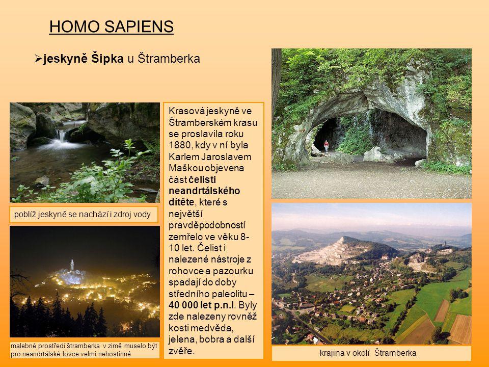 HOMO SAPIENS jeskyně Šipka u Štramberka