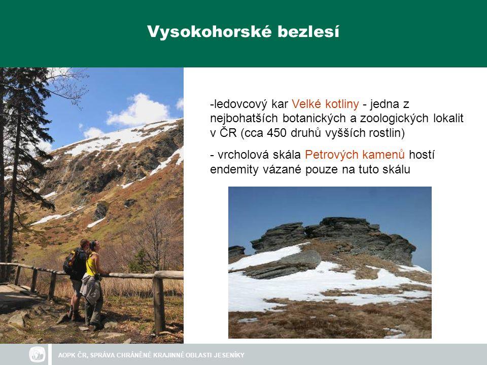 Vysokohorské bezlesí ledovcový kar Velké kotliny - jedna z nejbohatších botanických a zoologických lokalit v ČR (cca 450 druhů vyšších rostlin)