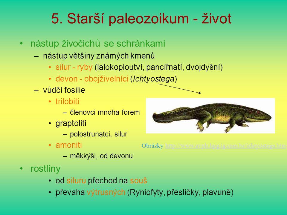5. Starší paleozoikum - život