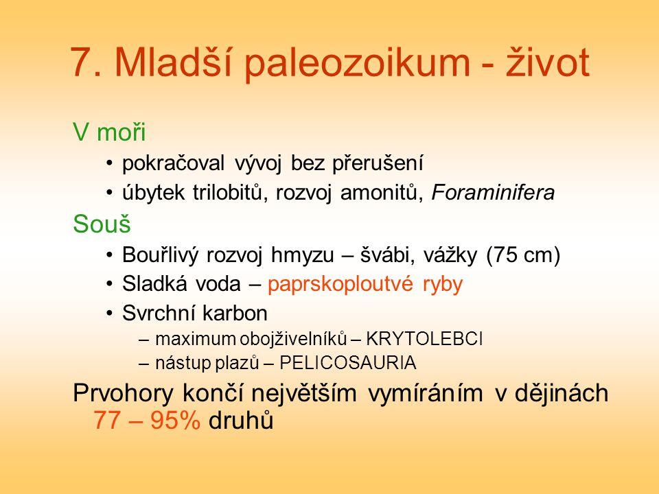 7. Mladší paleozoikum - život