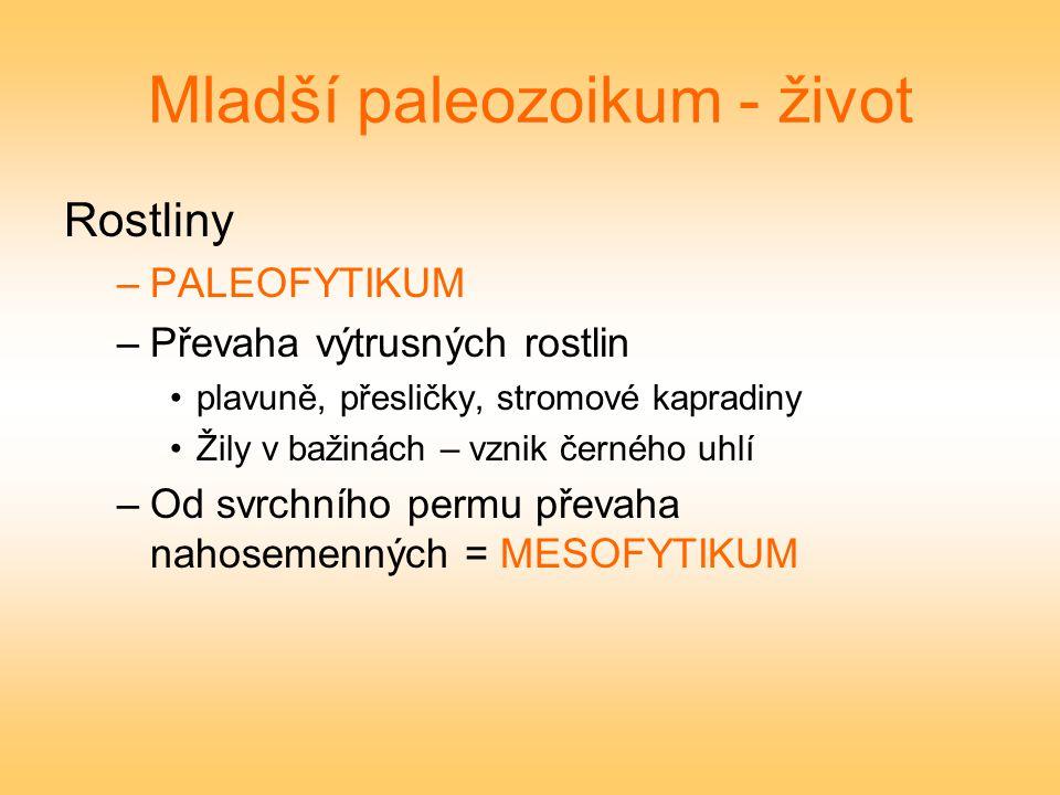 Mladší paleozoikum - život