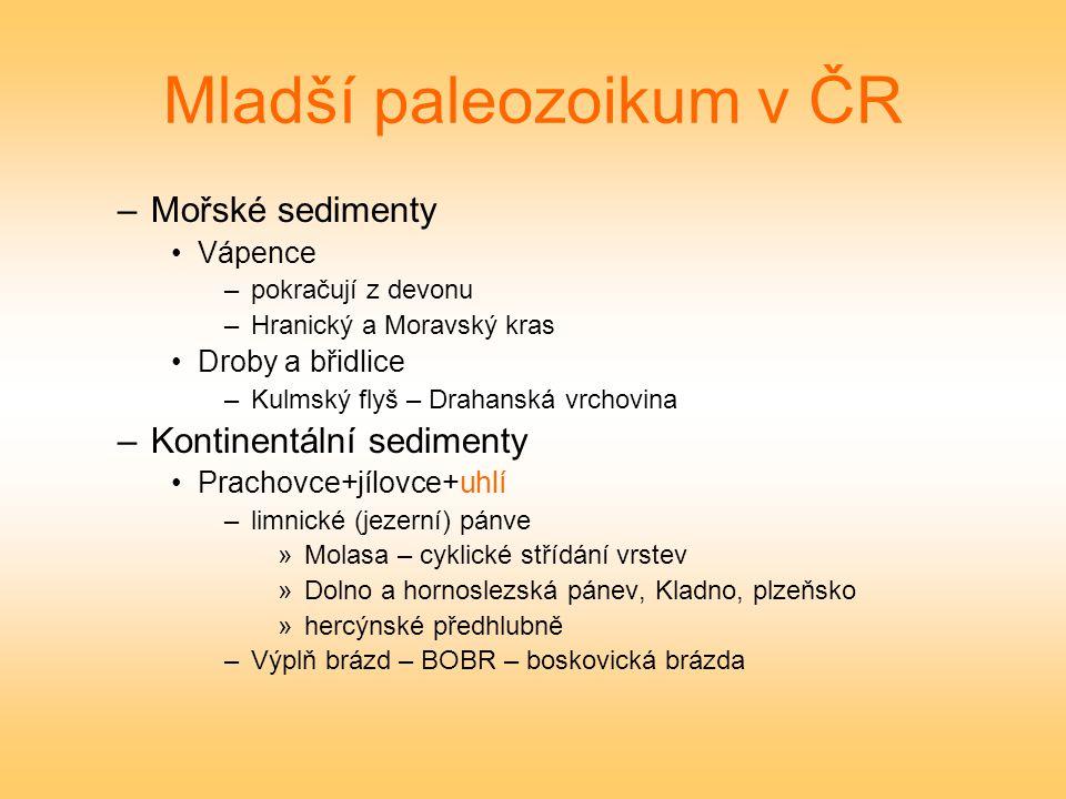Mladší paleozoikum v ČR