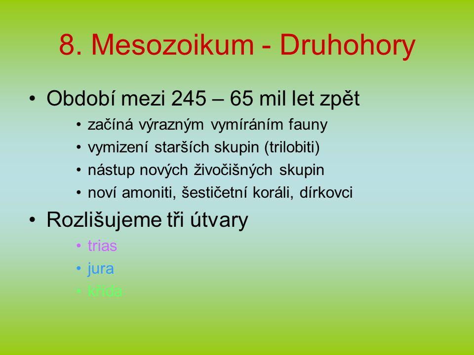 8. Mesozoikum - Druhohory