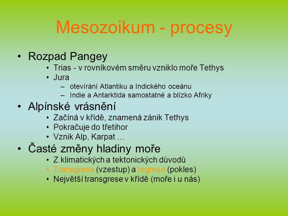 Mesozoikum - procesy Rozpad Pangey Alpínské vrásnění