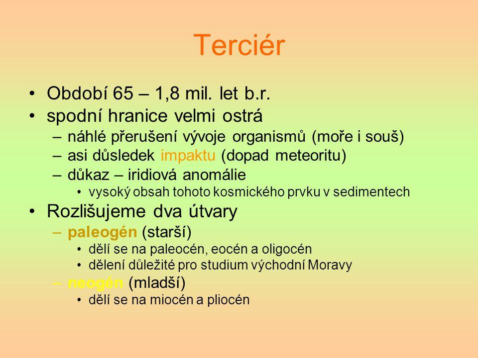 Terciér Období 65 – 1,8 mil. let b.r. spodní hranice velmi ostrá