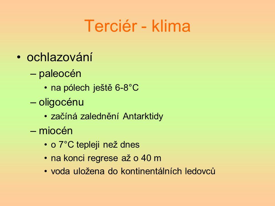 Terciér - klima ochlazování paleocén oligocénu miocén