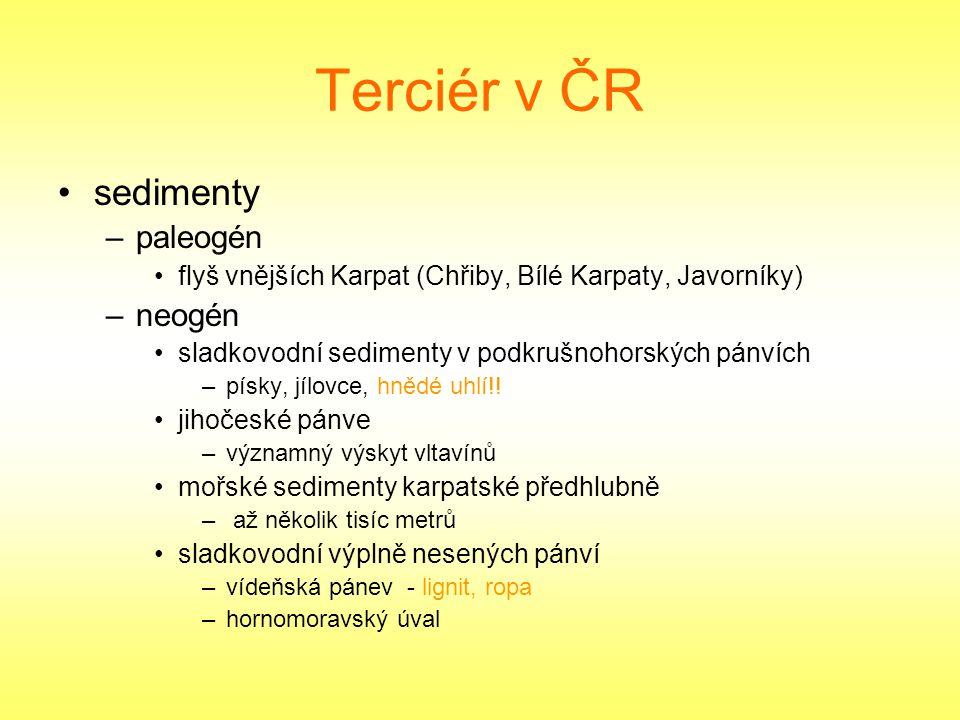 Terciér v ČR sedimenty paleogén neogén