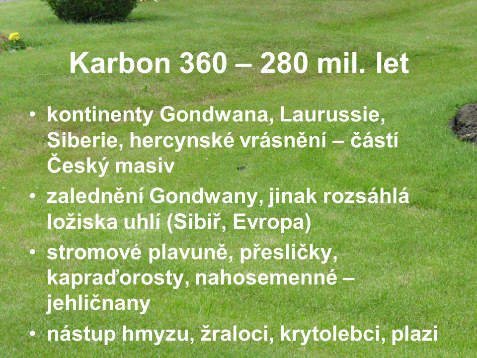 Karbon 360 – 280 mil. let kontinenty Gondwana, Laurussie, Siberie, hercynské vrásnění – částí Český masiv.