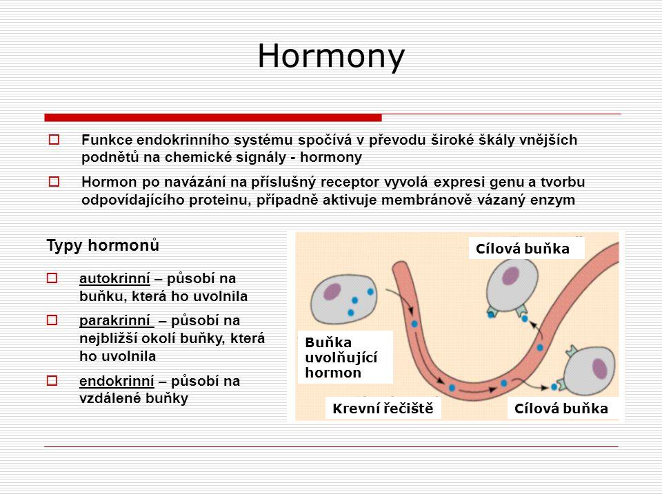 Hormony Funkce endokrinního systému spočívá v převodu široké škály vnějších podnětů na chemické signály - hormony.
