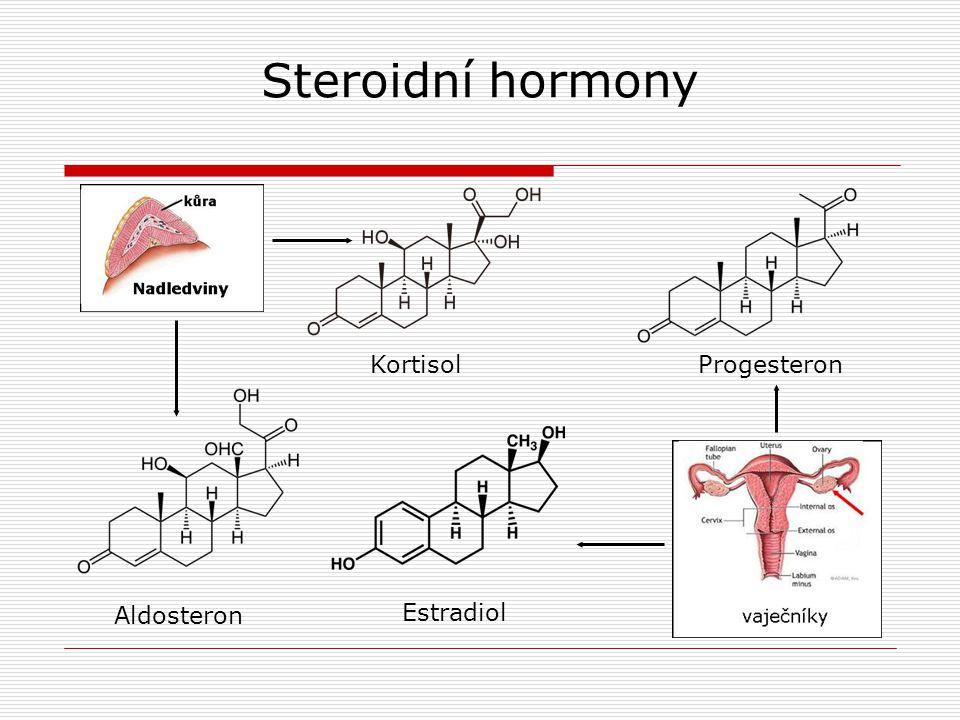 Steroidní hormony Kortisol Progesteron Aldosteron Estradiol