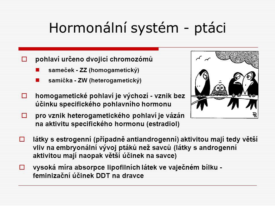 Hormonální systém - ptáci