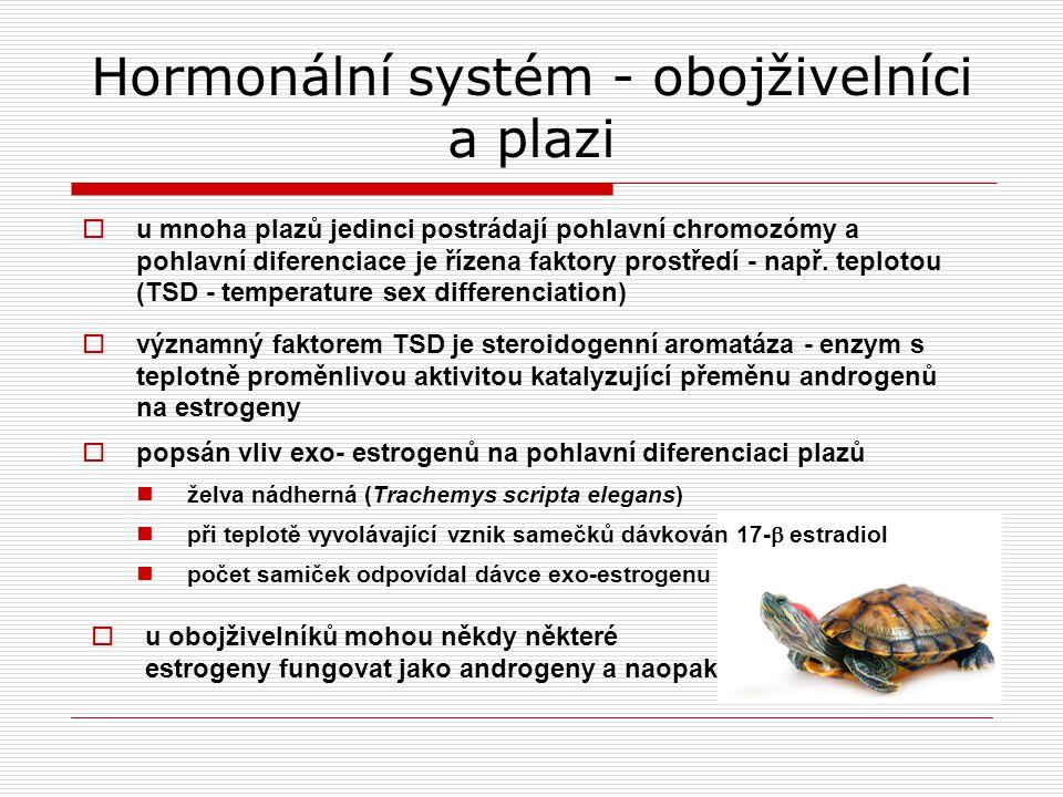 Hormonální systém - obojživelníci a plazi