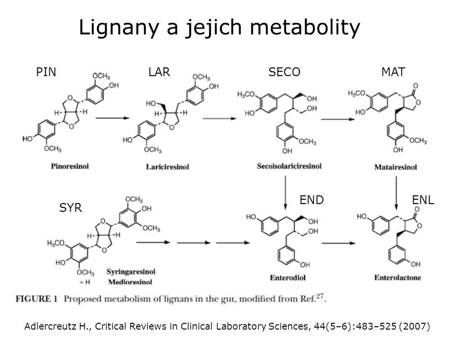 Lignany a jejich metabolity