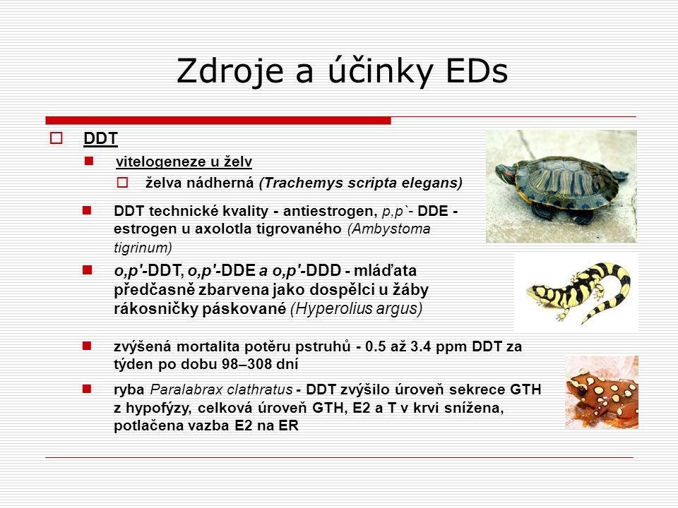 Zdroje a účinky EDs DDT. vitelogeneze u želv. želva nádherná (Trachemys scripta elegans)