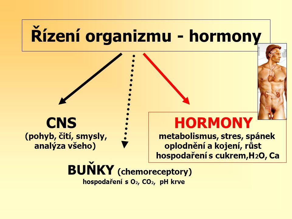 Řízení organizmu - hormony