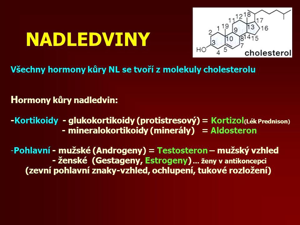 NADLEDVINY Hormony kůry nadledvin: