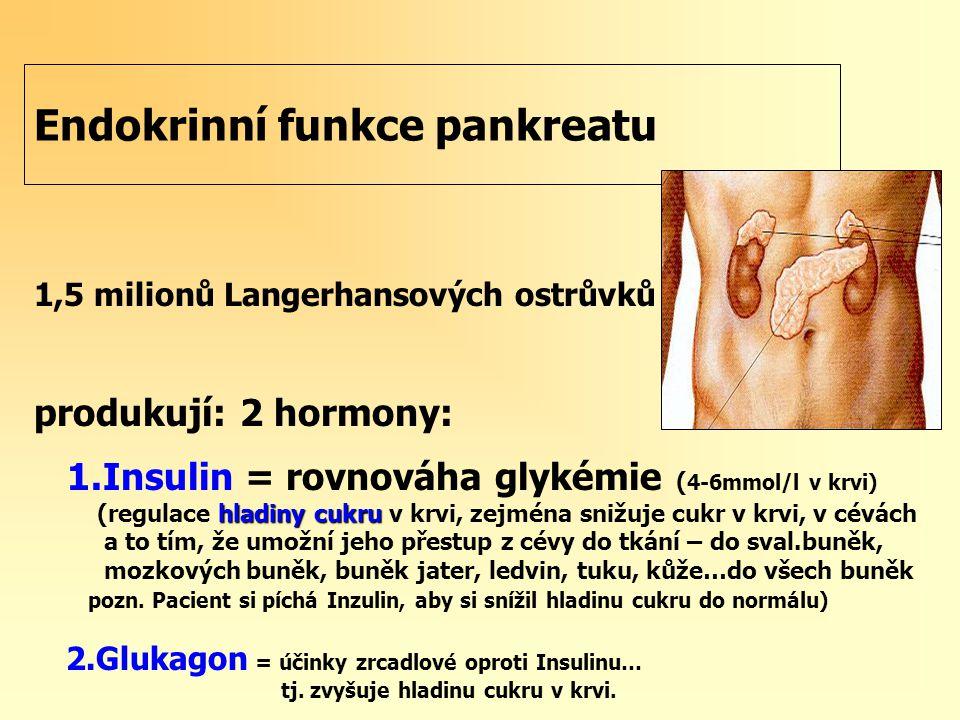 Endokrinní funkce pankreatu