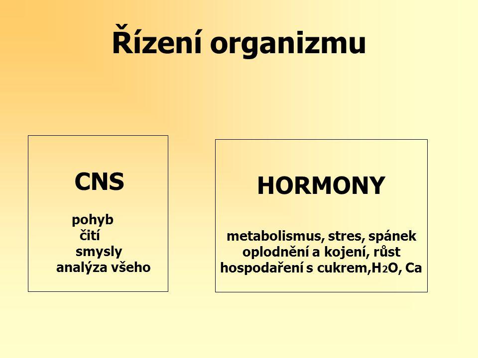 Řízení organizmu CNS HORMONY pohyb čití metabolismus, stres, spánek