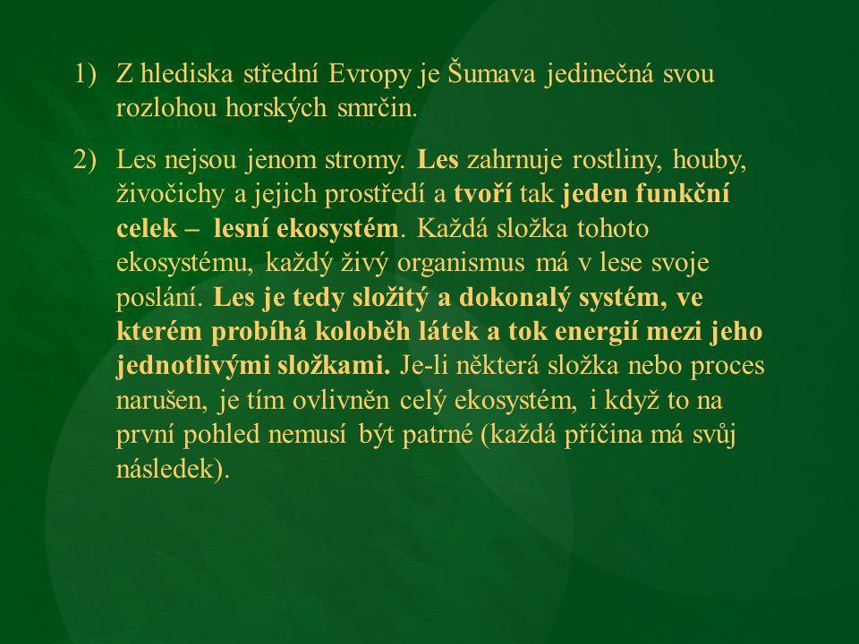 Z hlediska střední Evropy je Šumava jedinečná svou rozlohou horských smrčin.
