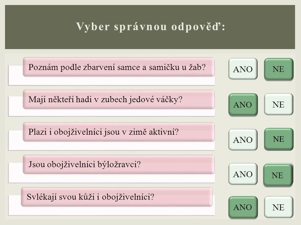Vyber správnou odpověď: