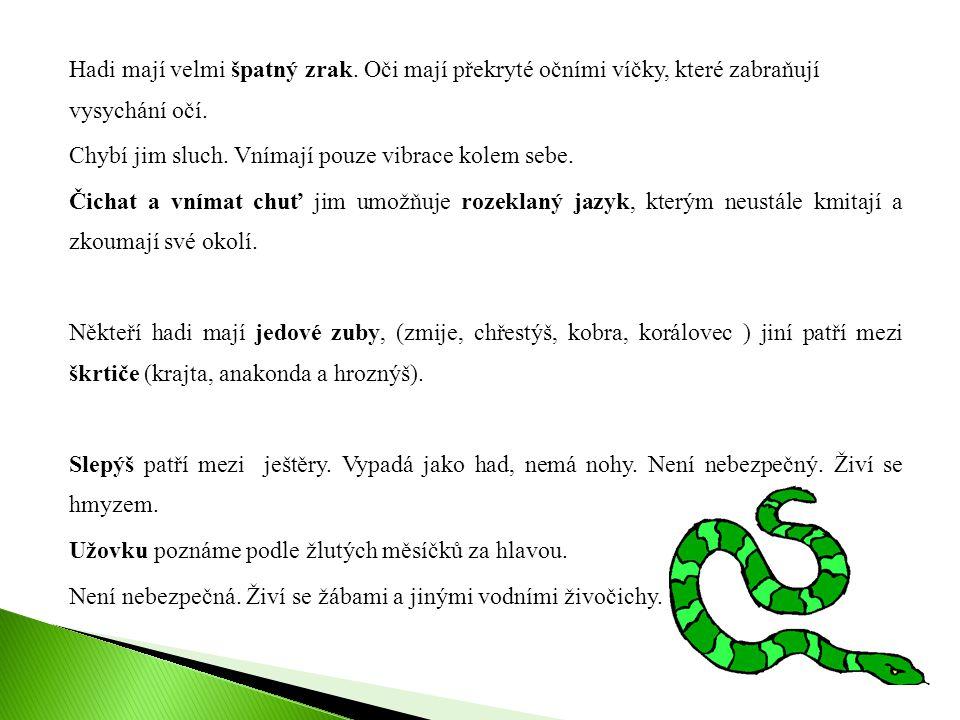 Hadi mají velmi špatný zrak