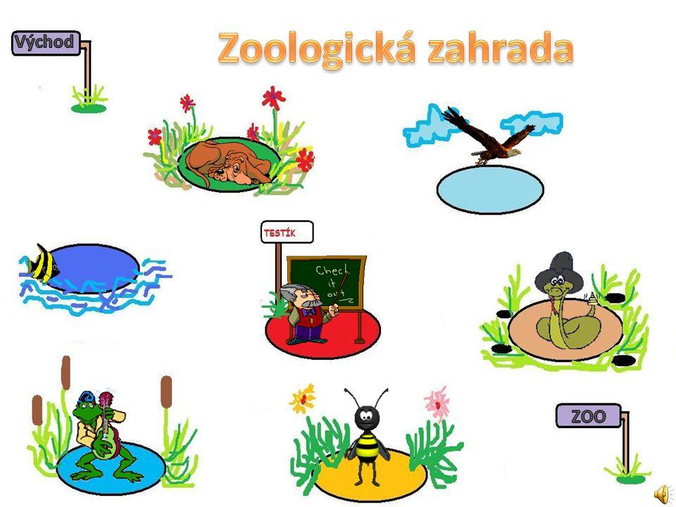 Zoologická zahrada Východ ZOO