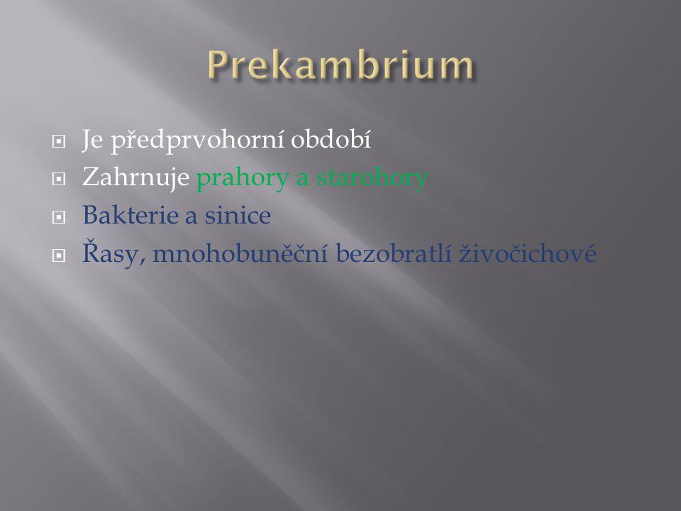 Prekambrium Je předprvohorní období Zahrnuje prahory a starohory