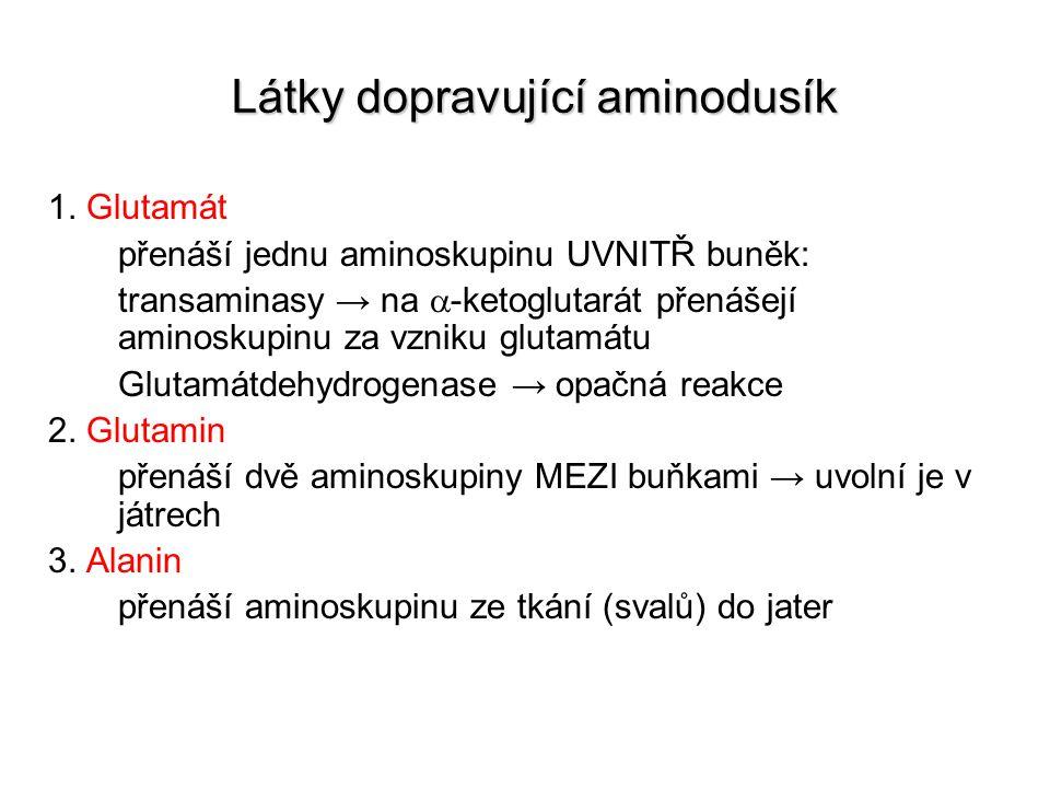 Látky dopravující aminodusík