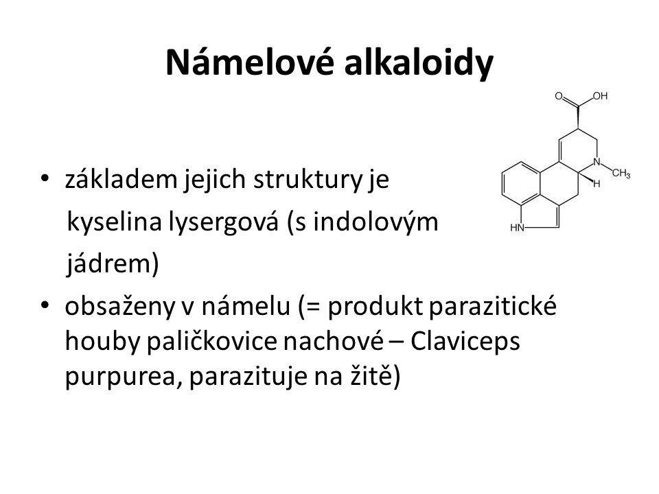 Námelové alkaloidy základem jejich struktury je