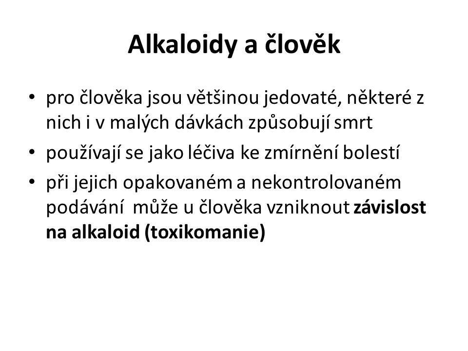 Alkaloidy a člověk pro člověka jsou většinou jedovaté, některé z nich i v malých dávkách způsobují smrt.