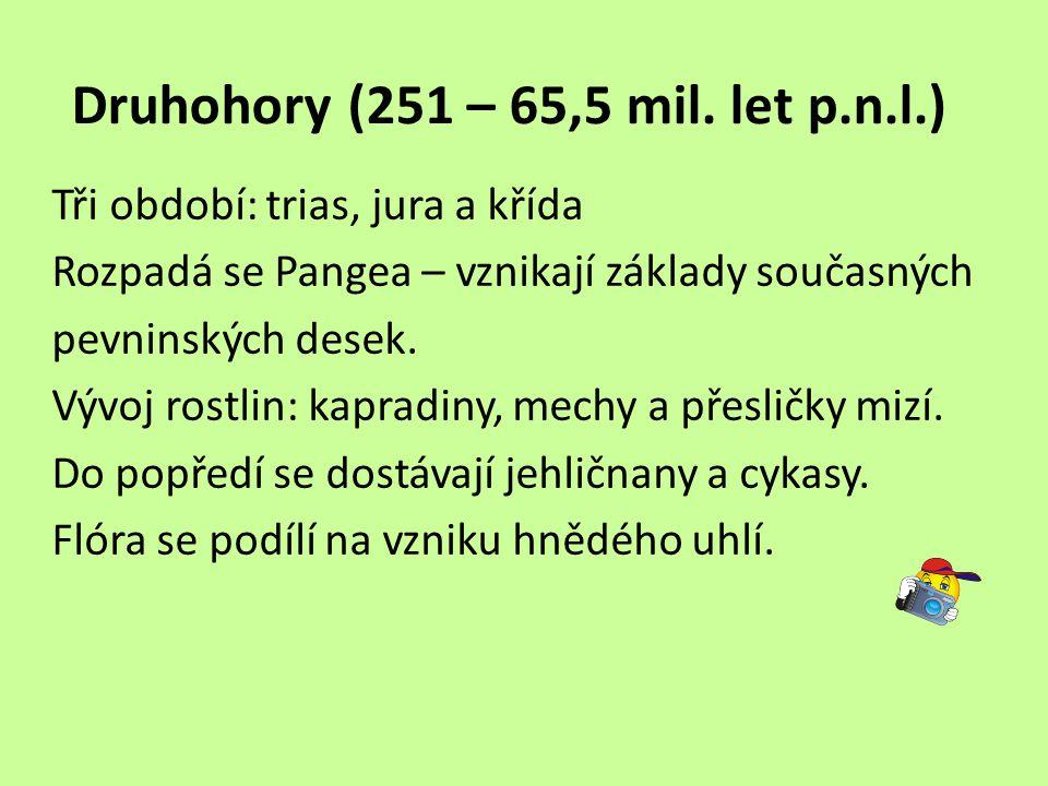 Druhohory (251 – 65,5 mil. let p.n.l.)
