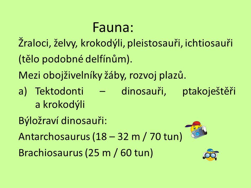 Fauna: Žraloci, želvy, krokodýli, pleistosauři, ichtiosauři