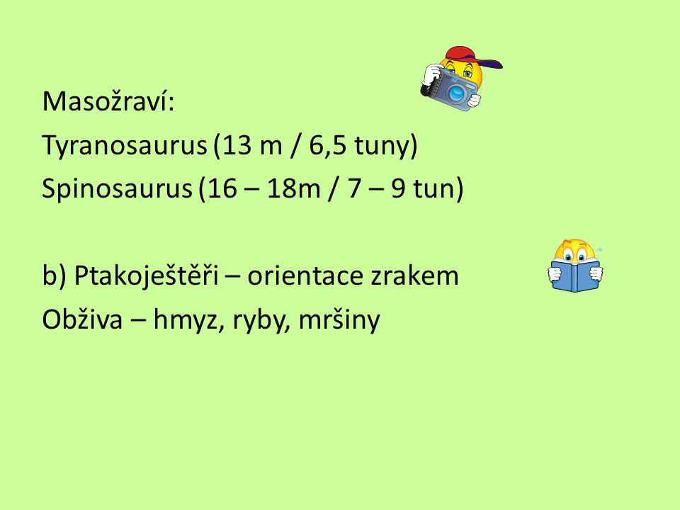 Masožraví: Tyranosaurus (13 m / 6,5 tuny) Spinosaurus (16 – 18m / 7 – 9 tun) b) Ptakoještěři – orientace zrakem.