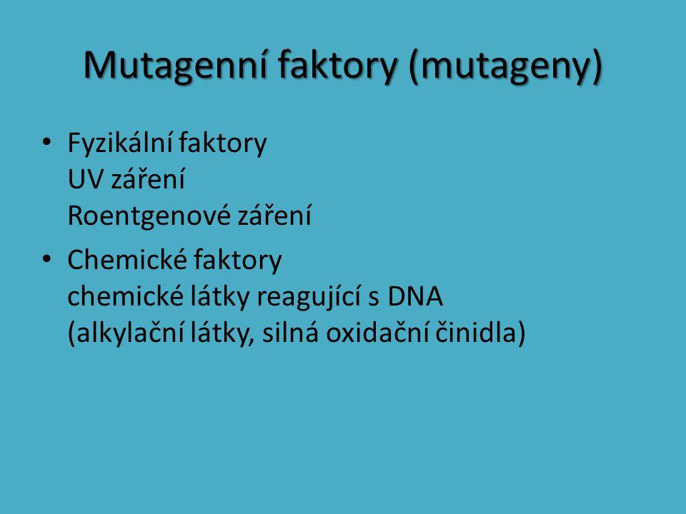Mutagenní faktory (mutageny)