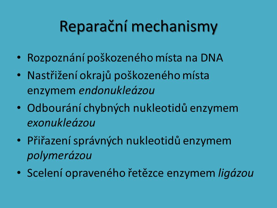 Reparační mechanismy Rozpoznání poškozeného místa na DNA