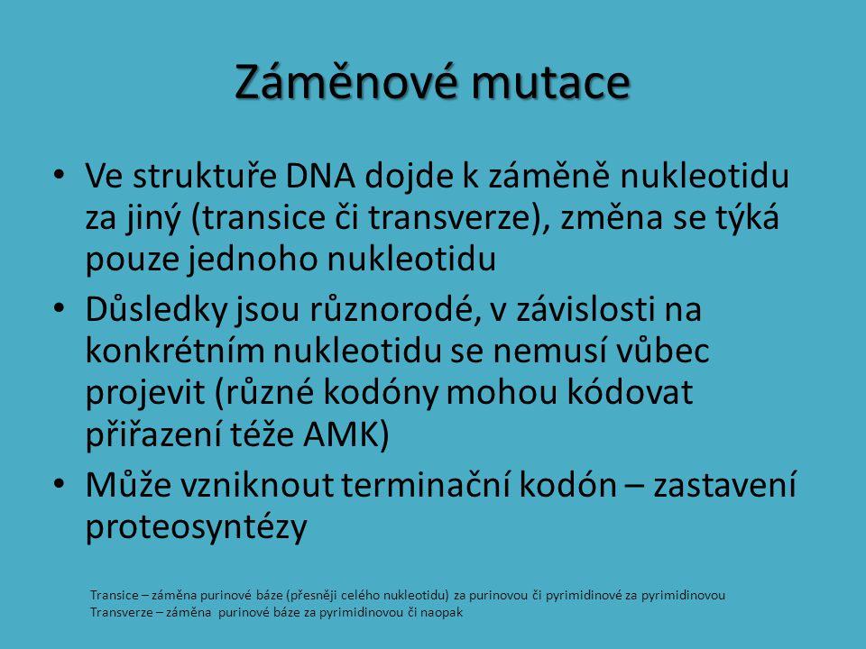 Záměnové mutace Ve struktuře DNA dojde k záměně nukleotidu za jiný (transice či transverze), změna se týká pouze jednoho nukleotidu.