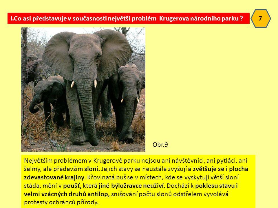 7 I.Co asi představuje v současnosti největší problém Krugerova národního parku Obr.9.